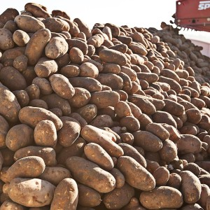 Washington State Potato Commission